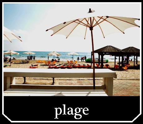le plage